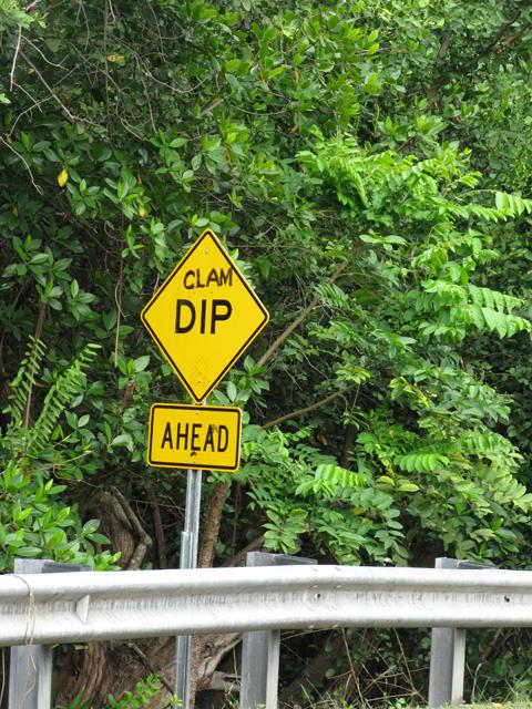 Clam Dip Picture