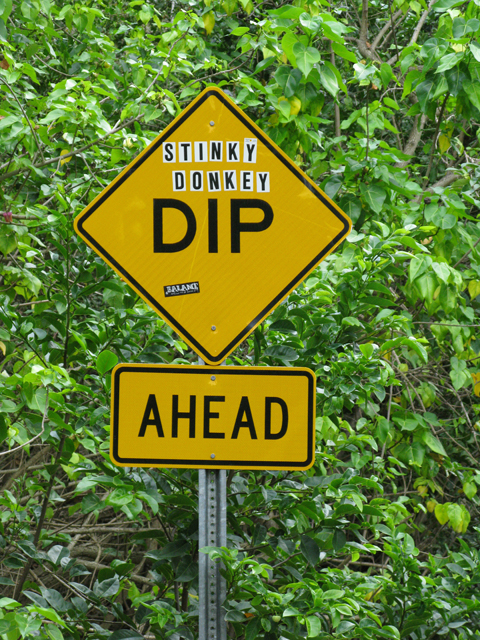 Stinky Donkey Dip Picture